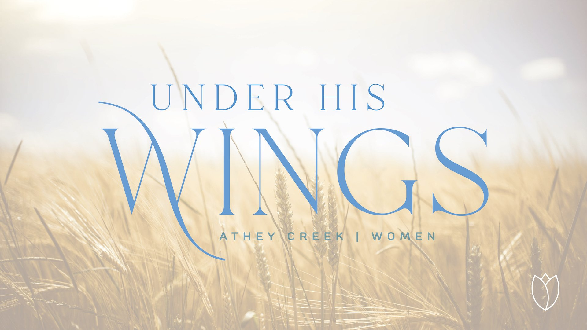 Teaching artwork for Under His Wings