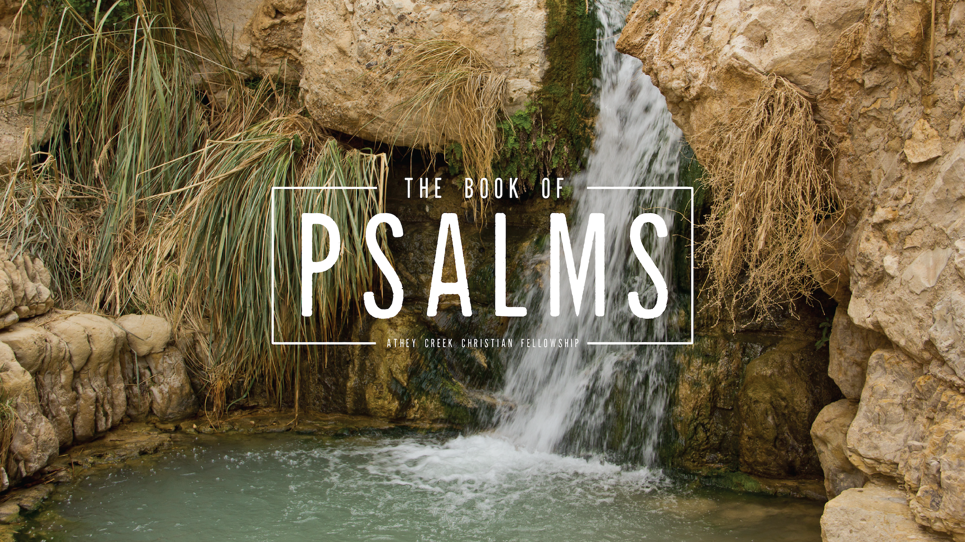 Poster forThrough the Bible (Psalms 39-41)