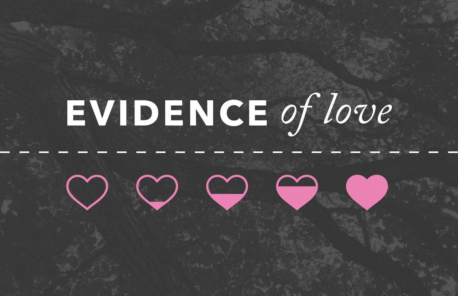 Poster forEvidence of Love | No Record of Wrongs