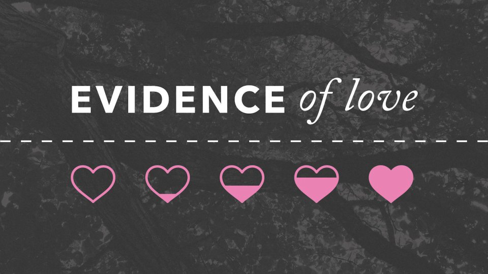 Poster for Evidence of Love