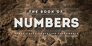 Teaching artwork for Through the Bible (Numbers 17-18)