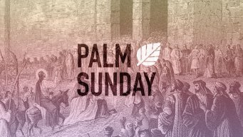 Teaching artwork for Palm Sunday 2016