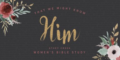 Teaching artwork for That We Might Know Him | Immanuel